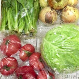 【お譲り先決定】野菜類の画像