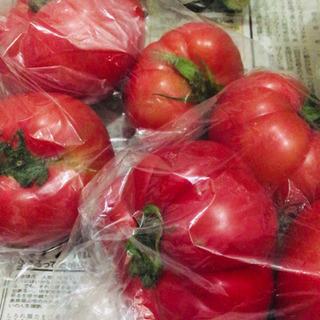 【お譲り先決定】野菜類 - 食品