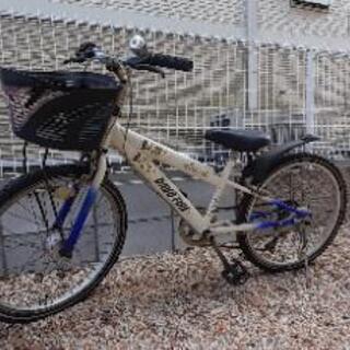 22インチ子供マウンテンバイク
