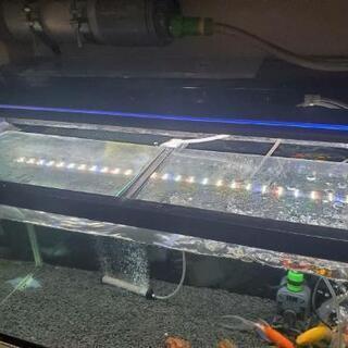 ガラス900水槽 フルセット