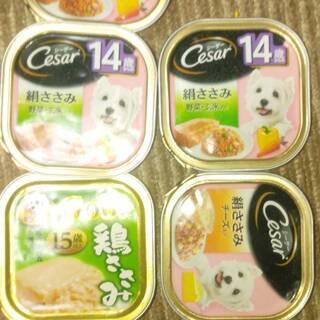 【ネット決済】犬のごはんシーザー 絹ささみ 100g 等 5個