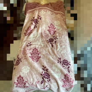 [中古] 毛布とタオルケット タダで貰ってください
