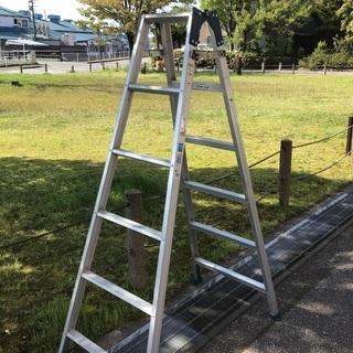 アルインコ6尺 脚立 梯子