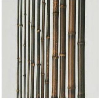 竹とか長い棒とか拾える所/山