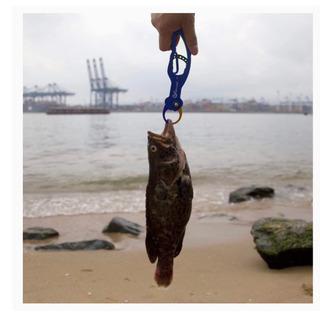 釣り用品、バス釣りフィッシュグリップ