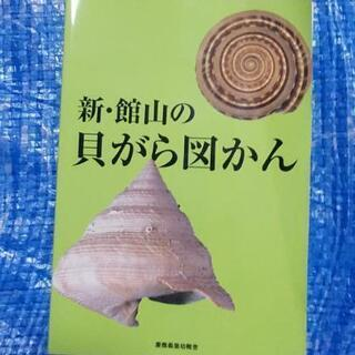 貝の写真集(図鑑)