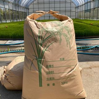 令和2年 千葉県産 玄米コシヒカリ 30㎏