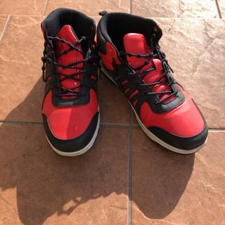 CEDAR CRESTの靴