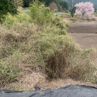 お庭 畑 田んぼ 山 荒地 草刈り致します!