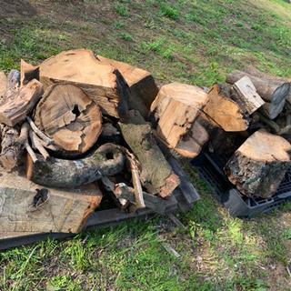 薪 1名限定❗️コンテナ1杯ご購入の方原木無料