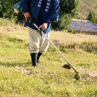 お庭のお手入れは造園⭐︎庭園管理の楓彩園におまかせ下さい!