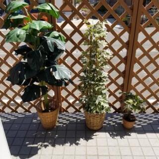 造花.観葉植物3点セット
