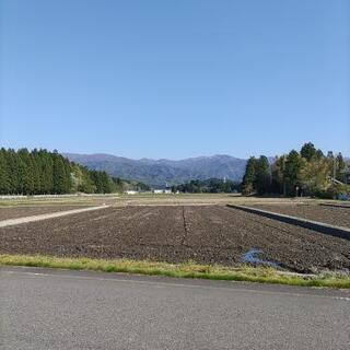 新潟県阿賀野市産コシヒカリ 有機米