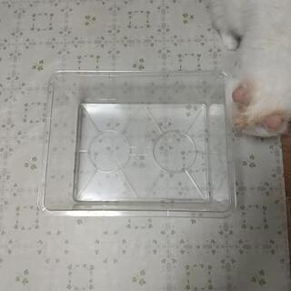 プラスチック水槽