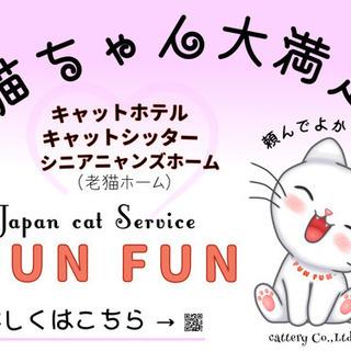"""猫専門サービス""""FUN FUN""""が緊急事態宣言期間過ぎにご予約承..."""