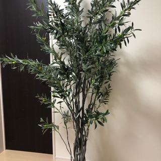 値下げ❗️人工観葉植物 フェイクグリーン オリーブ