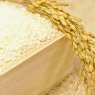 令和3年産 30kg 和歌山のお米(予約受付分)
