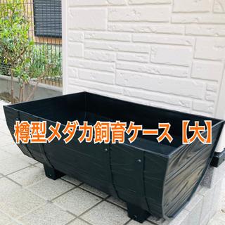 メダカ飼育ケース【樽型】【大】