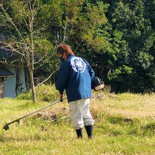 草刈りはお任せ下さい!お支払料金は当日作業料金のみ!
