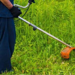 草刈り どんな場所でも承りますます。