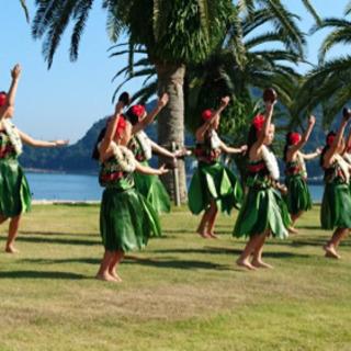 ハワイアンフラ教室 Hula Halau O Haunani