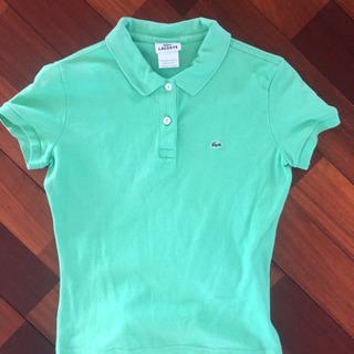 【ネット決済】ラコステ 緑のポロシャツ