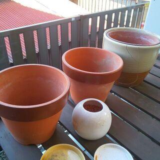 植木鉢 いろいろ あげます!