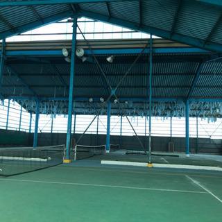 佐野市 テニスします