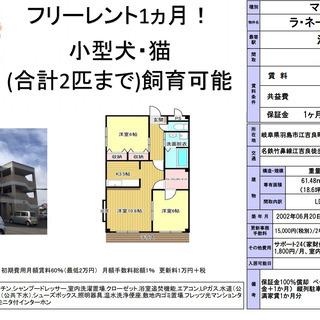 2階!1ヵ月フリーレント!【ペット可!リフォーム予定】2LDK(...