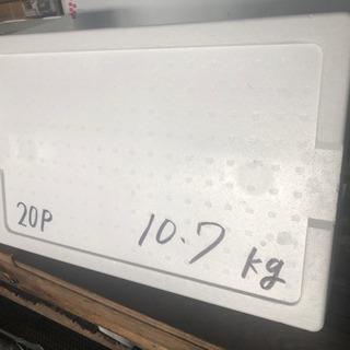 丈夫な発泡スチロール 釣りBBQ 梱包材料