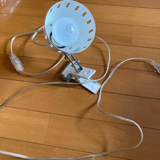 クリップ付きの電球