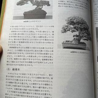 盆栽技能講座 講習本 - 本/CD/DVD