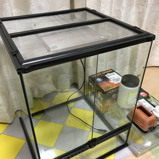 【ネット決済】グラステラリウム4560  爬虫類飼育セット カメ...