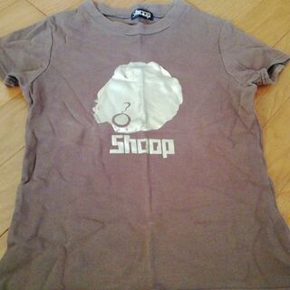 SHOOP チビTシャツ ブラウン