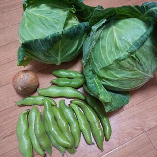 GWのお野菜3点盛り