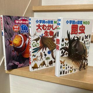 いきもの図鑑【美品】3冊