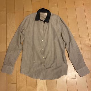 【ネット決済】メンズシャツ ロバートギャラー  2枚4000円