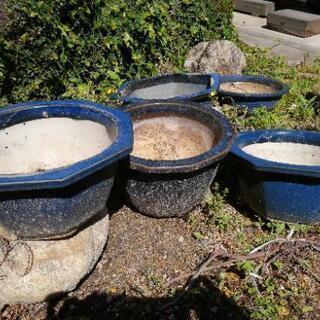 盆栽用の鉢いろいろ、底板差し上げます(中古)