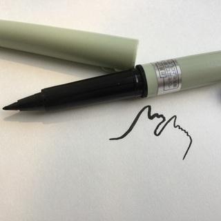 【ネット決済】くれ竹細い筆ペン、替インクつき