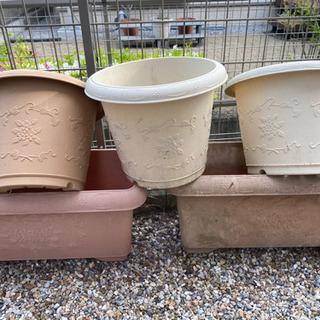 植木鉢。一つ100円でいかがですか?
