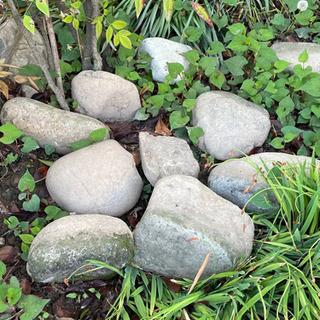 庭石大小いろいろ