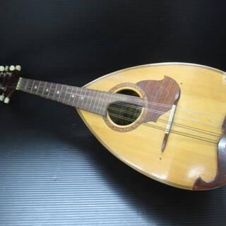 マンドリン スズキ ヴァイオリン 1966 No.223
