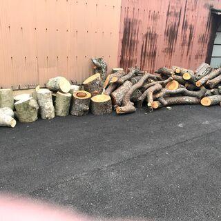 薪ストーブ用 原木 松 広葉樹