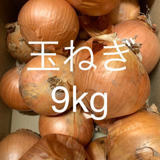 ④北海道産 玉ねぎ L・L大サイズ 9キロ