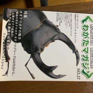 クワガタマガジ No.22