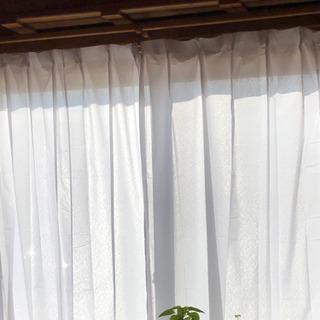 【ネット決済】カーテン