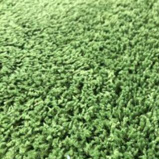 グリーンのカーペット、ラグ