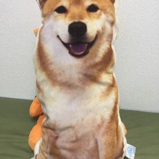 柴犬まる ぬいぐるみクッション