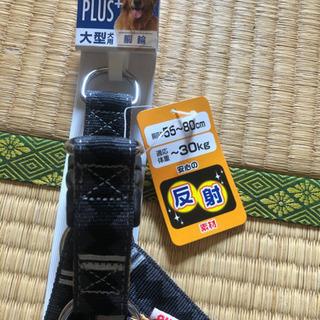 ペティオ社 大型犬用、胴輪 − 岐阜県