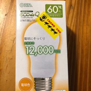 電球 蛍光ランプ
